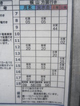 Hoshino2010 134