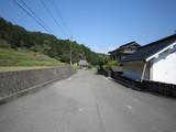 Senzogiri0417 062