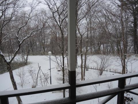 2019-2-10 SNOWING