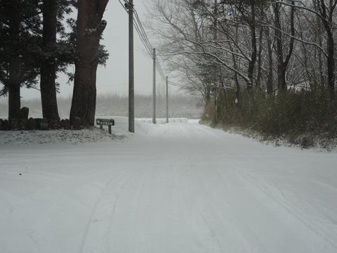 2017-1-14 SNOW