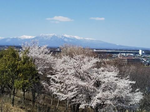 2019-4-14 G GOZAN - コピー