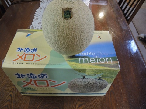 2015-8-13 MELON