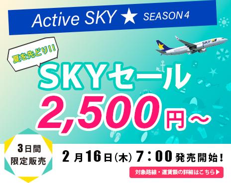 banner_skysale170208
