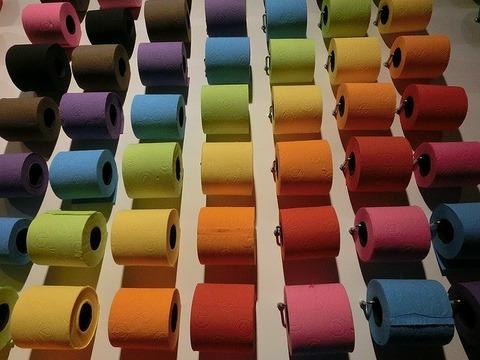 toilet-paper-1230149_640