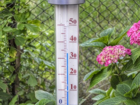 thermometer-398735_640