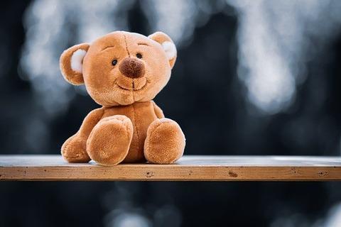teddy-5119454_640