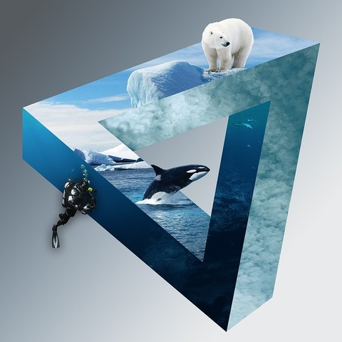 polar-bear-2329989_640 (1)