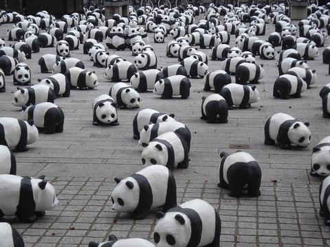 ドラマ「シロでもクロでもない世界で、パンダは笑う。」第3話が話題!感想・反応まとめ【清野菜名・横浜流星・要潤・佐藤二朗】