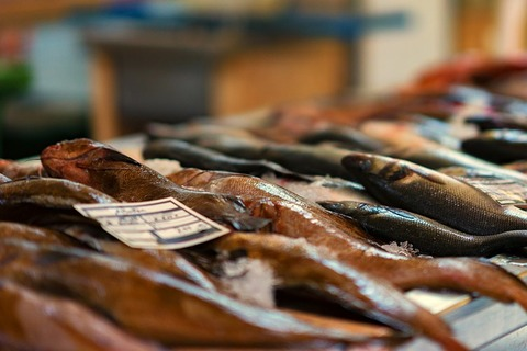 fish-market-3408397_640