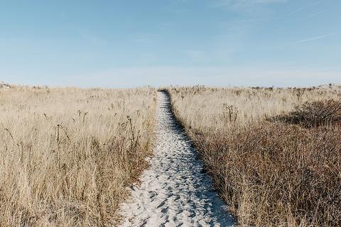 prairie-1246633_640