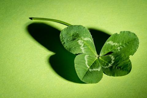 clover-941597_640