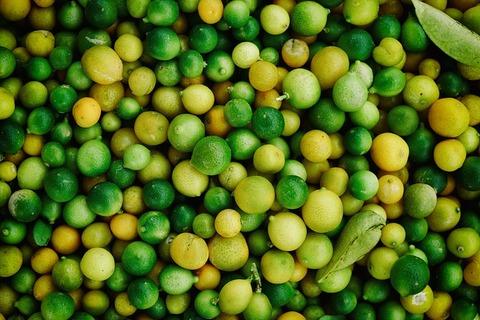 citrus-1842320_640