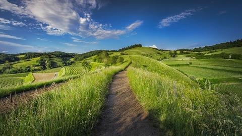 countryside-1868781_640