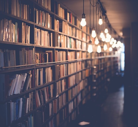 books-2596809_640