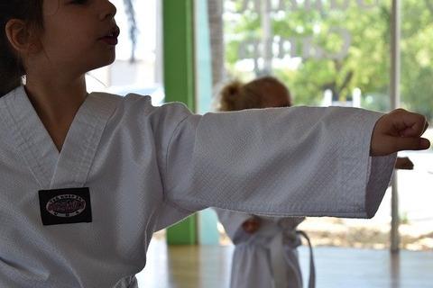 martial-arts-4255007_640