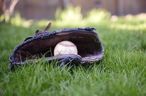 baseball-gfa75dc195_640