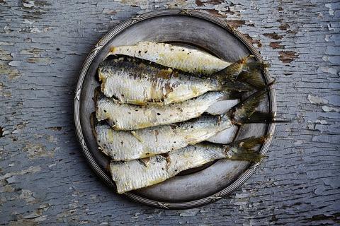 sardines-1954911_640
