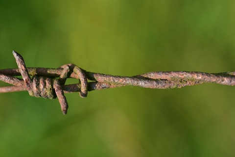 barbed-wire-3538584_640