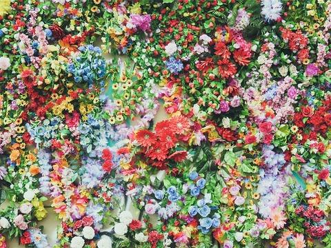 flowers-691611_640