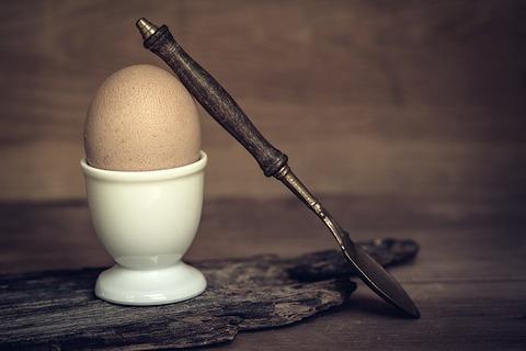 egg-1381507_640