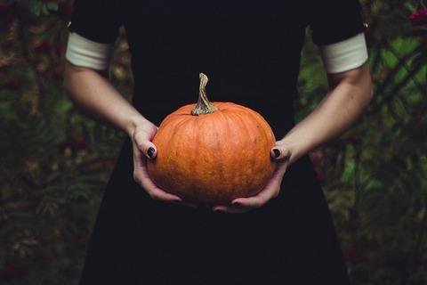 pumpkin-1838545_640