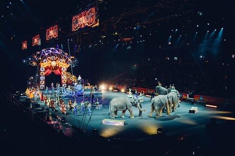 circus-828680_640