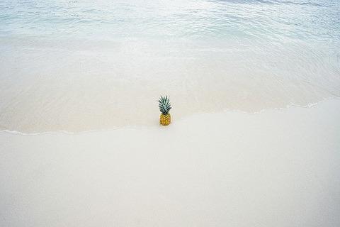 pineapple-1209141_640