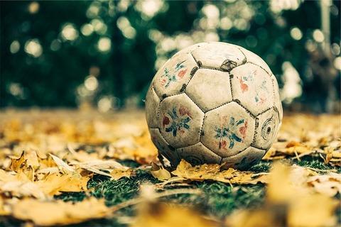 soccer-698553_640