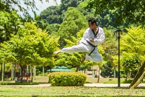 martial-arts-2924161_640