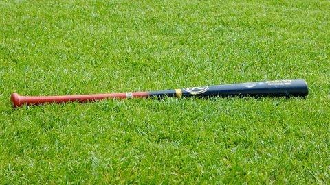 baseball-1646091_640