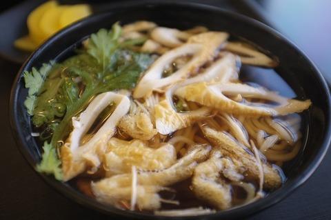 udon-noodles-638054_640