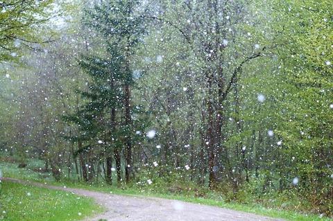 rain-2775032_640