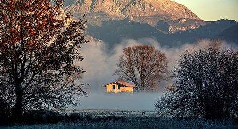fog-1951855_640