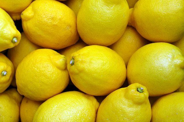 テレビ千鳥 lemon 動画