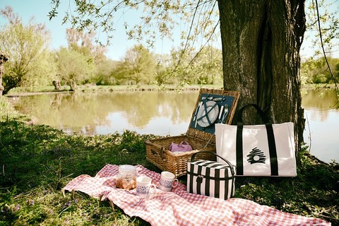 picnic-3474130_640