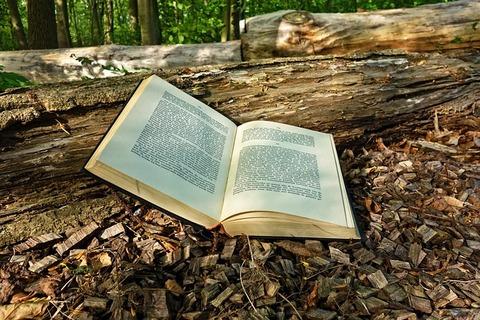 book-3356154_640