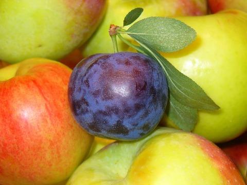 fruits-1868977_640