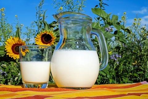 milk-2474993_640
