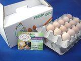ランニング卵