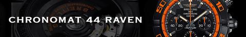banner_raven2