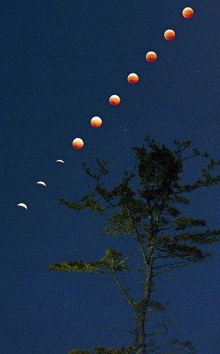 2014皆既月食2
