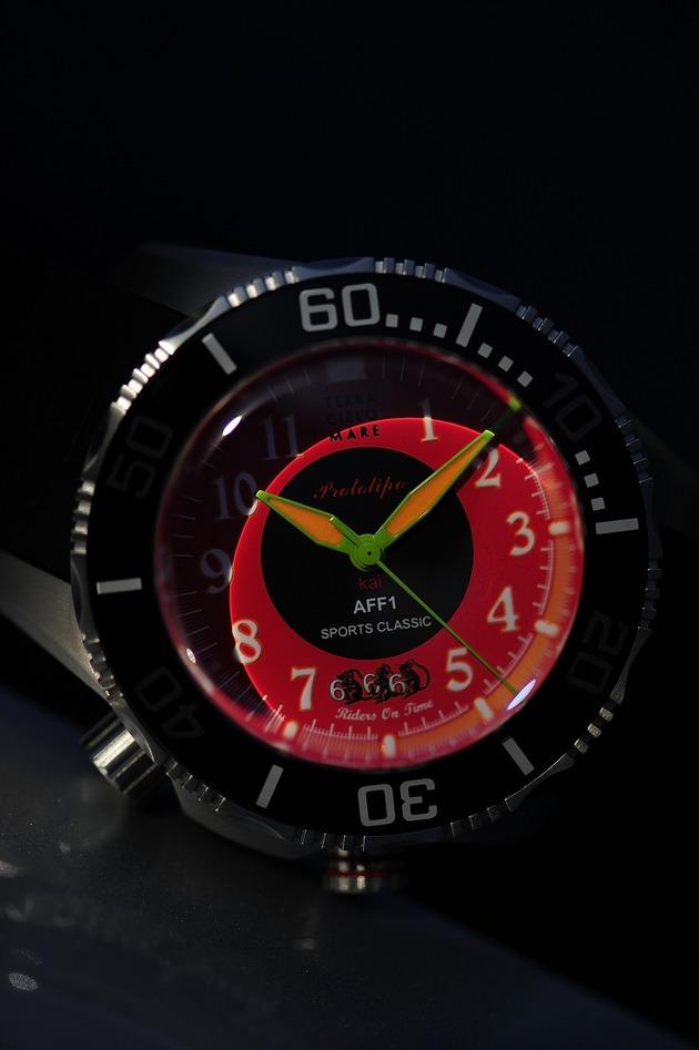 TCM   666   German_DSC0226