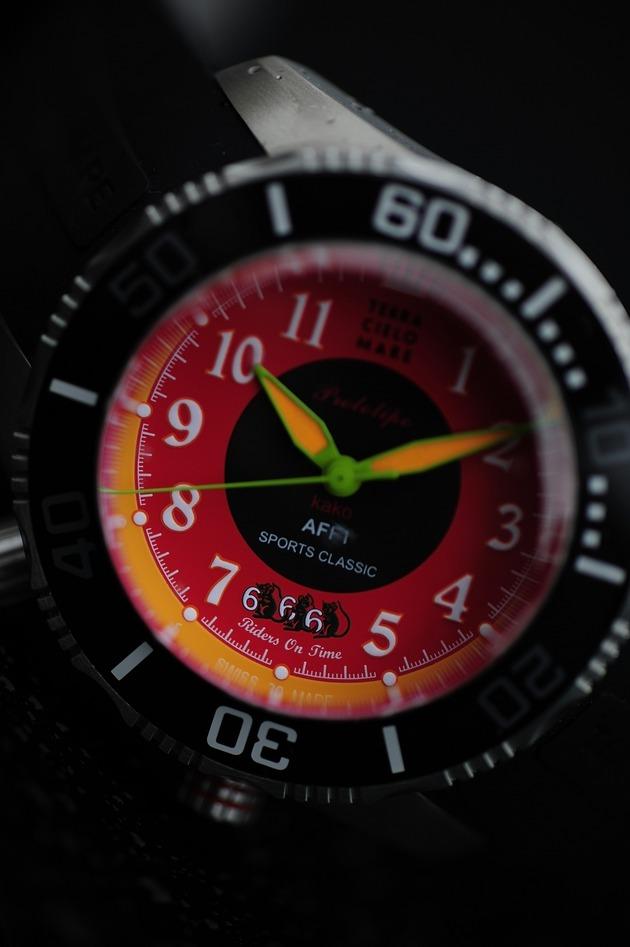 TCM  666  German _DSC0776