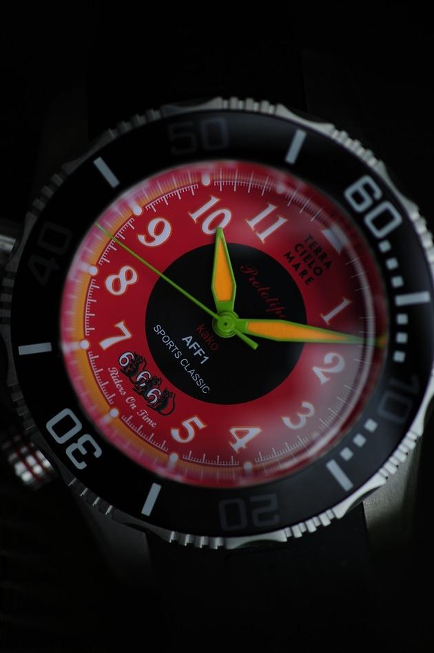 TCM  666  German _DSC0729