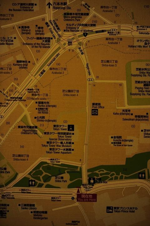 東京3_DSC0804