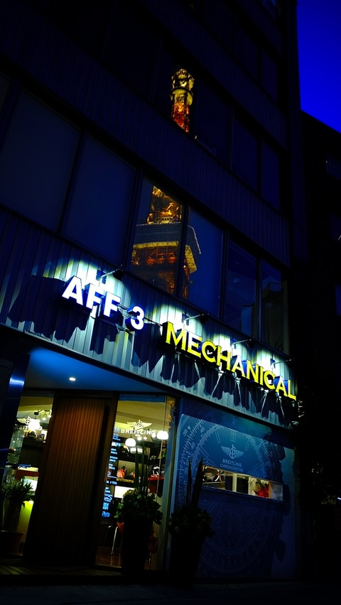 AFF3  FUJI_S518266