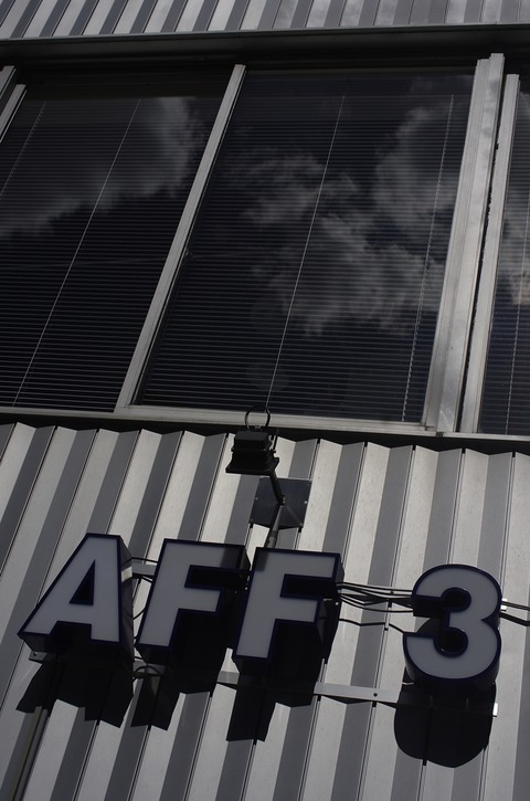 AFF1  _IGP0858