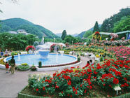 garden-pic2