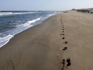 海岸に伸びる足跡