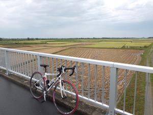 阿賀野川横雲橋